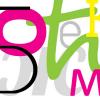 """Slike: """"Kreativna radionica jezičkih igaraza učenje srpskog kao nematernjeg i stranog jezika"""", 07.02.2015."""