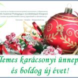 Kellemes karácsonyi ünnepeket és boldog új évet!