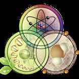 Határterületek – mi a közös a fizikában, kémiában és a biológiában?, 2016.12.17.